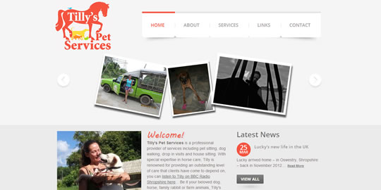 Tillyspetservices.co.uk - Tailored Template Website